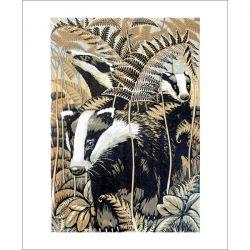 Badgers Greetings Card by Martin Truefitt Baker MB3030